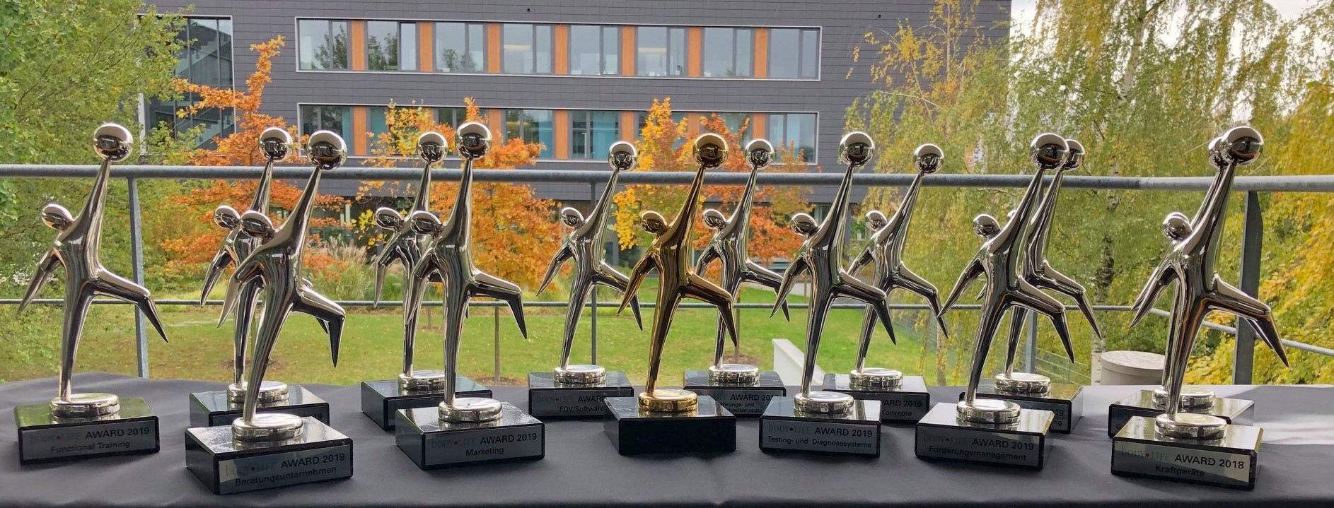 easySolution gewinnt Body Life Award 2019